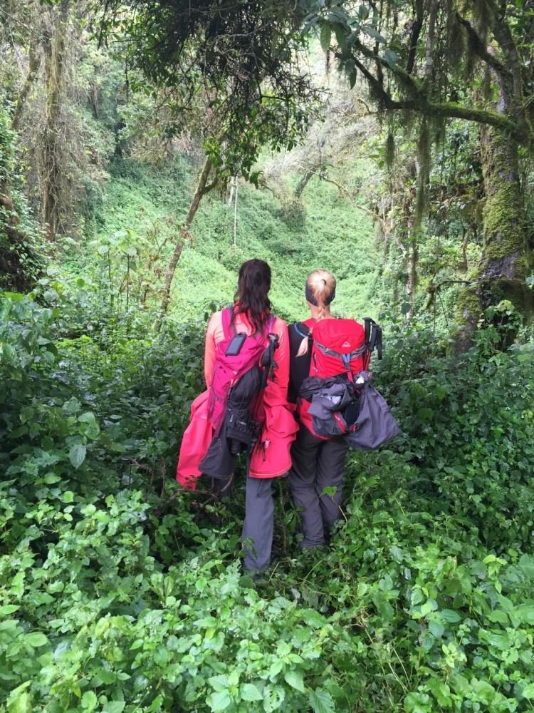 McKinley Hiking Kilimanjaro