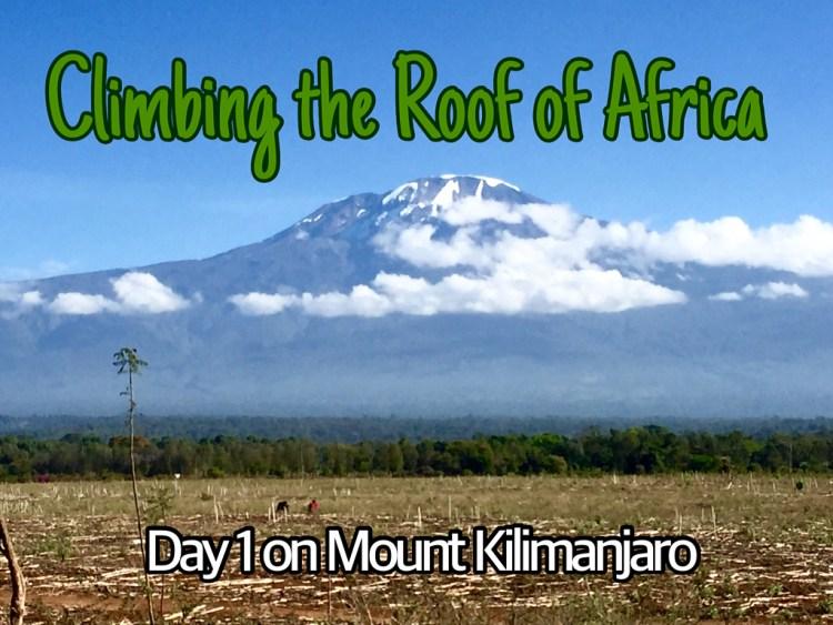 Mount Kilimanjaro Africa