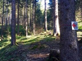 Route Marking Marks IBK Trailrun
