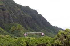 Rope climb Spartan Hawai'i