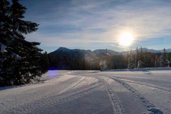 earlybird skiing flachau