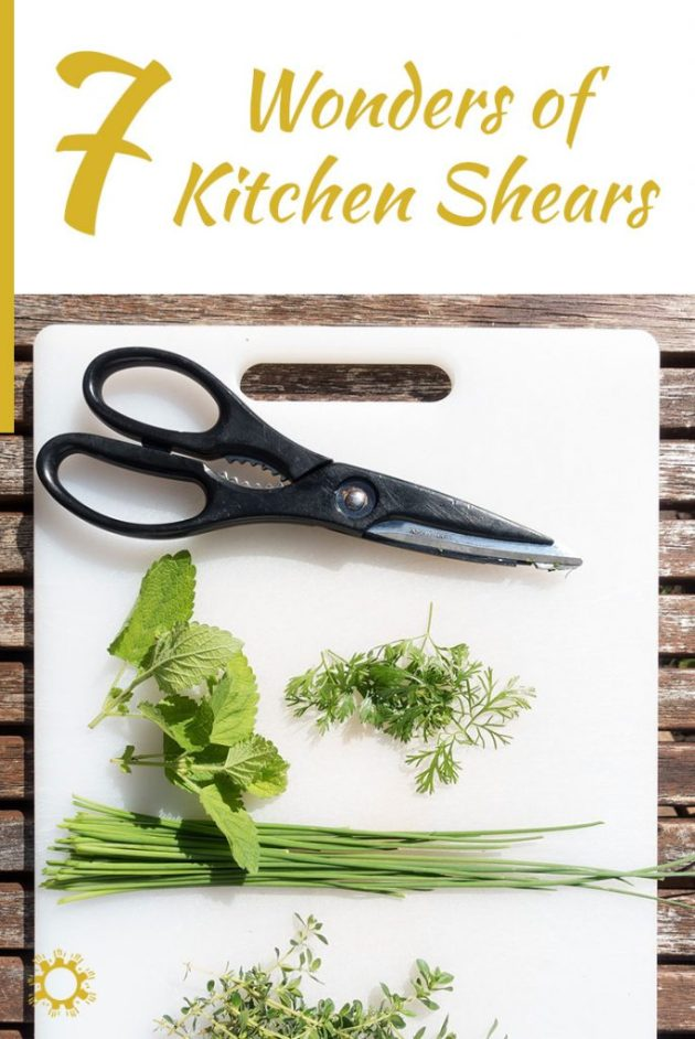 The 7 Wonders of Kitchen Shears