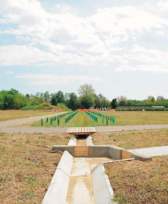 milano orti irrigazione