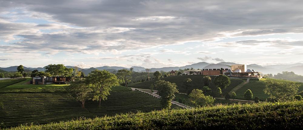 tè bar thailandia