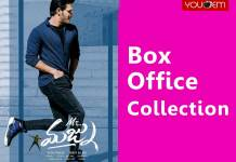 Mr Majnu Box Office Collection