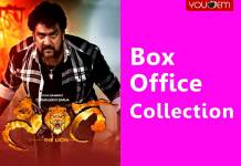 Sinnga Box Office Collection