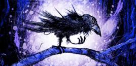 Risultati immagini per il tempo dei maghi corvo cressida cowell