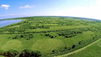 Photo of Jezioro Łuknajno