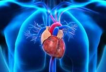 Photo of Dlaczego w kosmosie serce zmienia kształt?