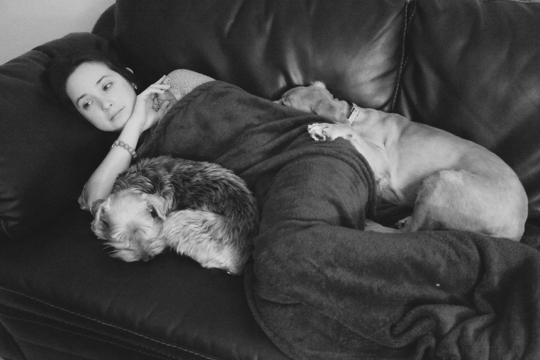 Nena and Dogs
