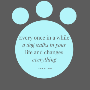 Dog Quote from Canva