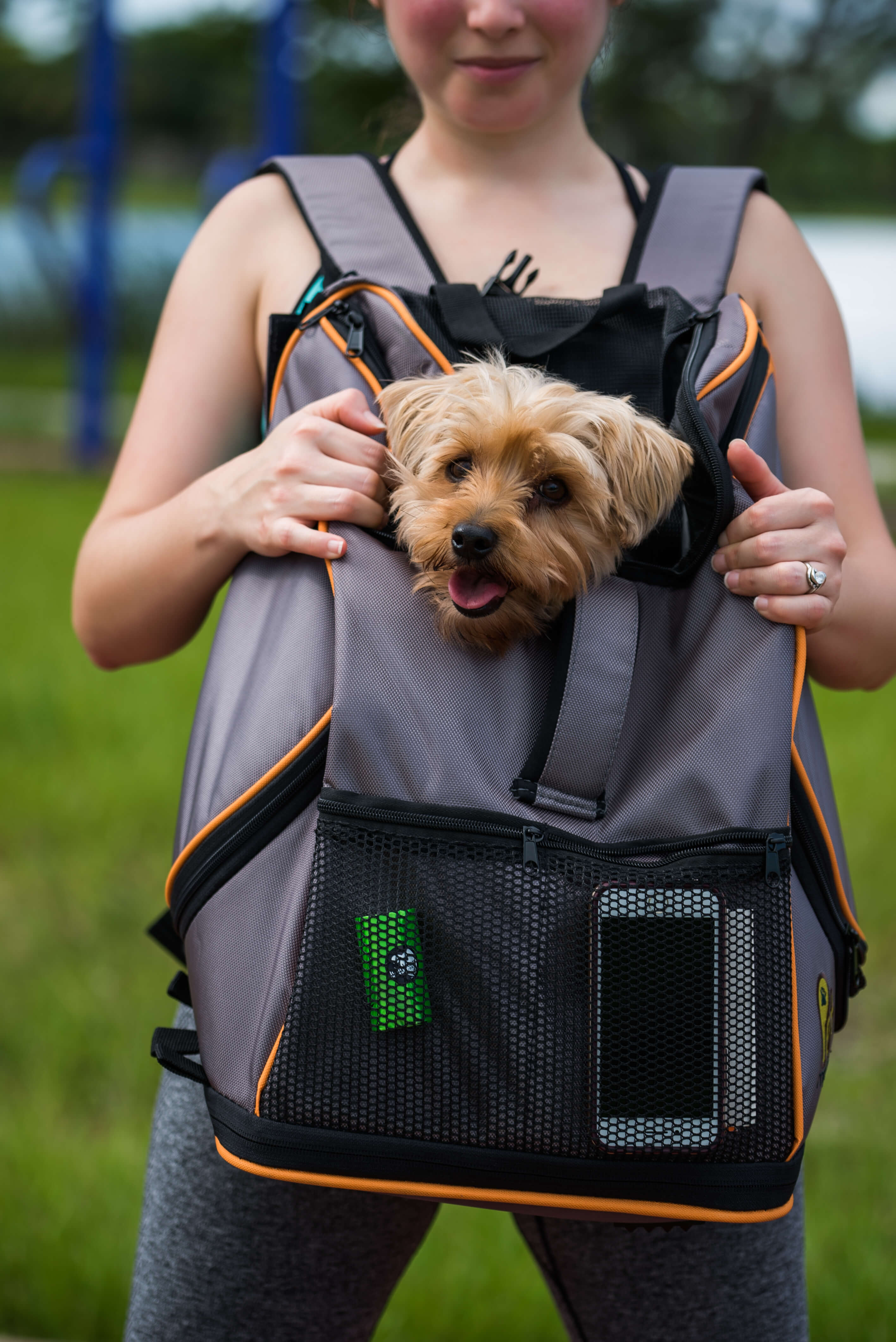 Dog Exercises with Lambo Backpack from Pet Magasin