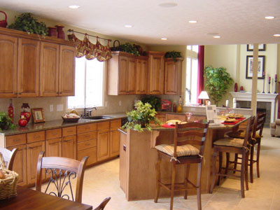 Florida Kitchen Decorating Ideas Cabinet Decor Interior Design Drawings
