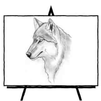 pencil sketch of a wolf profile