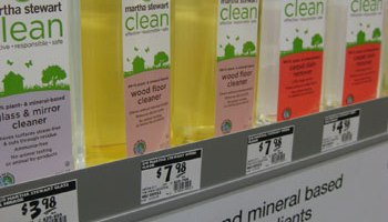 30+ Easy-To-Make All Natural & Eco Friendly Cleaners | Young