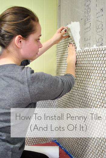how-to-install-a-wall-of-penny-tile