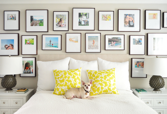 Beige-Paint-Bed-With-Dog-Frame-Gallery