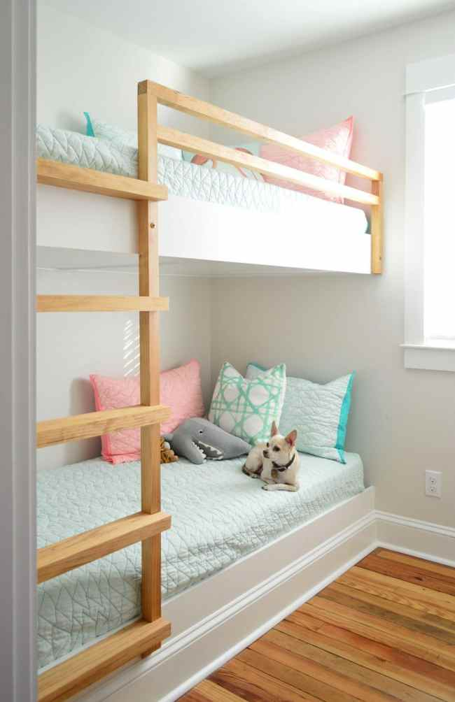 diy built in wall to wall bunk beds with chihuahua on bottom bunk