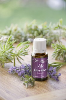 Lavender Essential Oil - Young Living Essential Oils