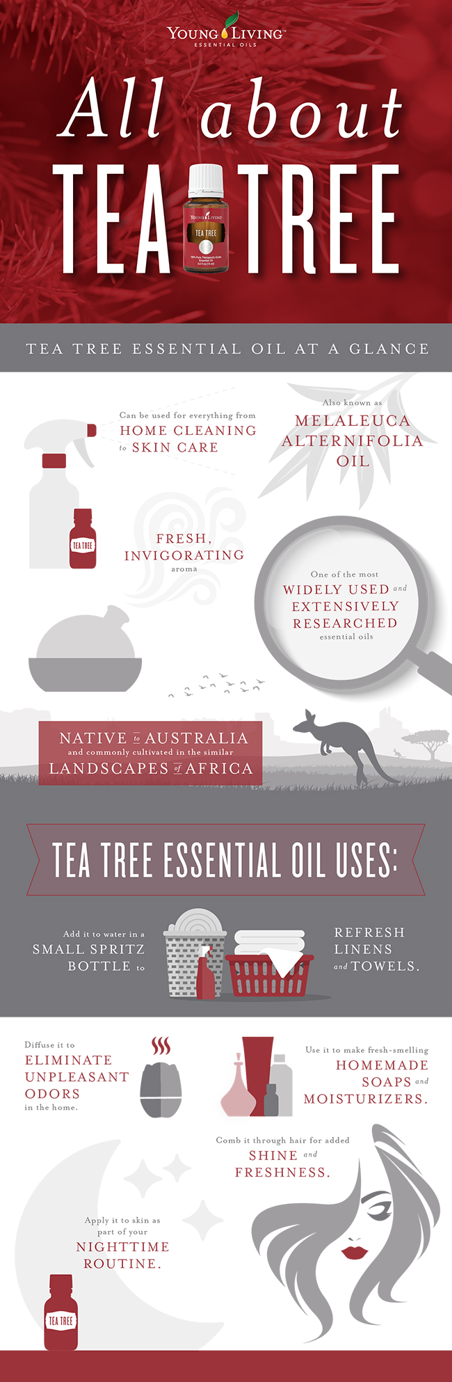 How To Use Tea Tree Essential Oil Benefits And Uses