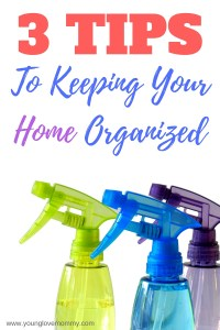 Keeping Your Home Organized in the Summer(1)