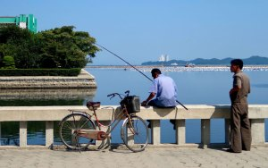 A fisherman observing Wonsan Port.style=