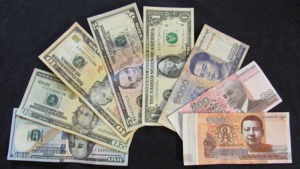 USD alongside Cambodian riel