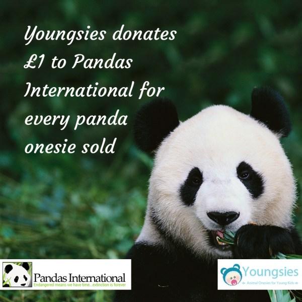 Youngsies Panda International