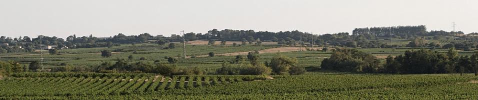 20120815-Massannes