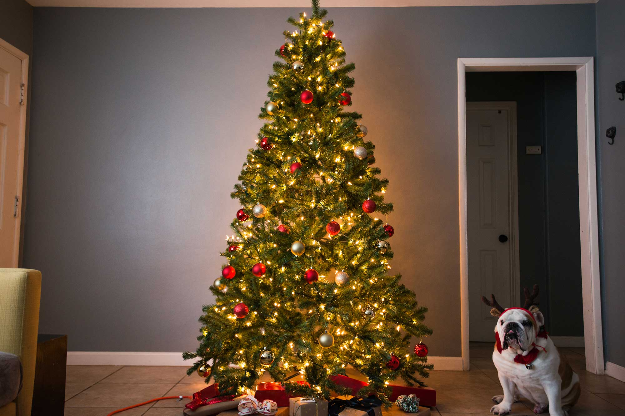 The Best Artificial Christmas Tree Of 2018 Your Best Digs
