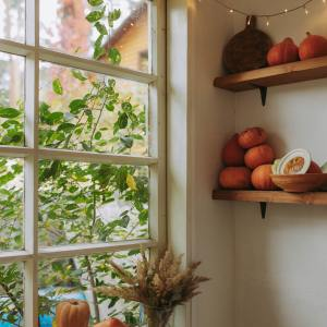 Gourds in sunny window