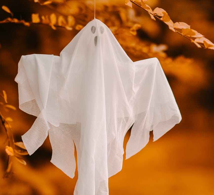 decorative ghost hanging on branch