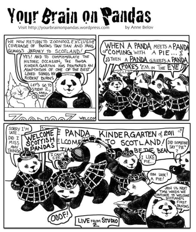 The Scottish pandas