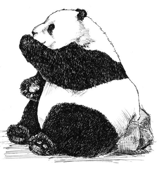 Hi there - panda litho 100 res