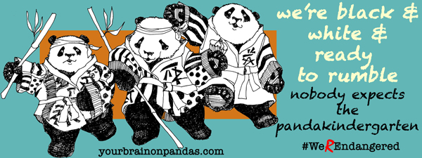 Nobody expects the Panda Kindergarten!