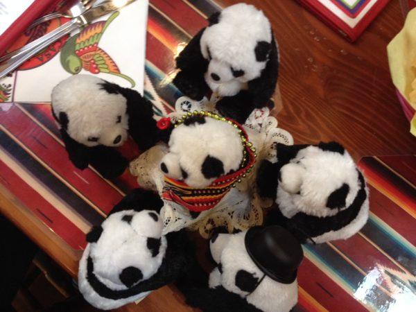 panda convention