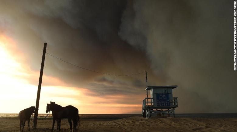 181112143345-horses---wildfires-exlarge-169_1542259684566.jpg