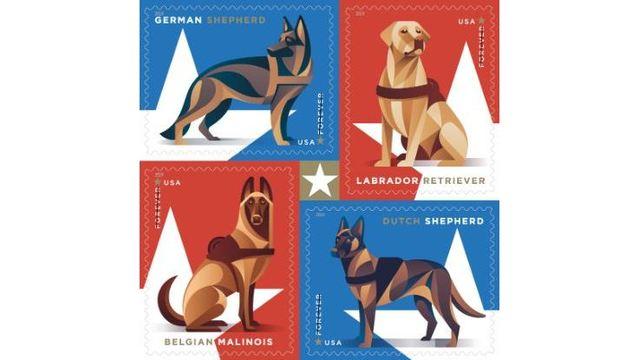 dog stamps_1549585109078.JPG_71623058_ver1.0_640_360_1549594949991.jpg.jpg