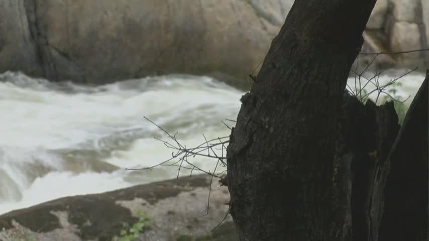 Tule River Drowning_10154956