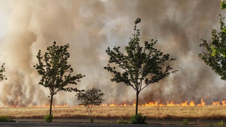 5-13-19 CARTMILL FIRE 9_1557803091189.jpg.jpg
