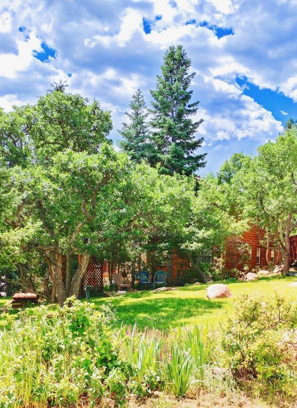 southwest colorado springs