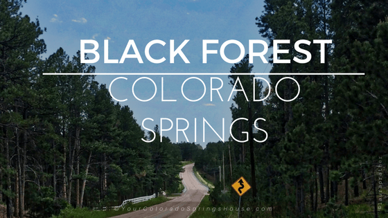 Neighborhoods up in Black Forest, Colorado