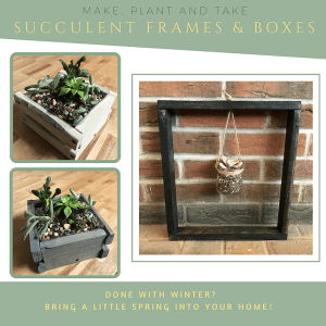 Picture depicting our two succulent projects, a box with 4-5 succulents or a wooden frame holding a single succulent in a glass jar