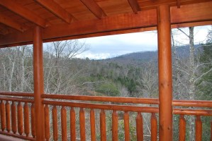 Sherwood Forest New Construction - Deck View