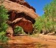 Coyote Gulch, Escalante, UT, Hike, Grand Staircase, Glen Canyon