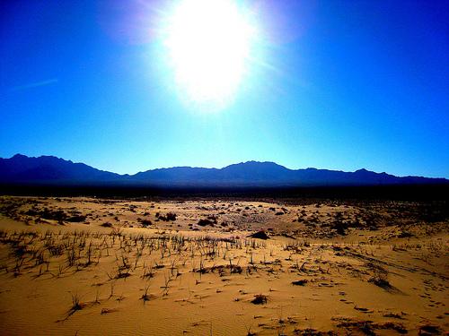 Desert sun rise | Arizona sunset, Beautiful sunset