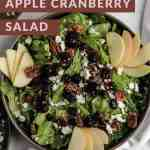 Fall harvest apple cranberry salad in a black bowl with apples, feta, and dried cranberries on top.