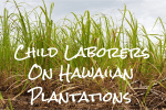 Child Laborers on Hawaiian Plantations