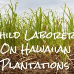 Child Laborers on Hawaiian Plantations