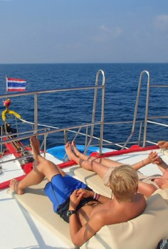 The most comfortable journey can be found on a cruise boat.